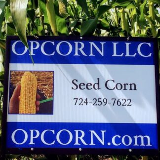 Field Corn Seed (open pollinated)